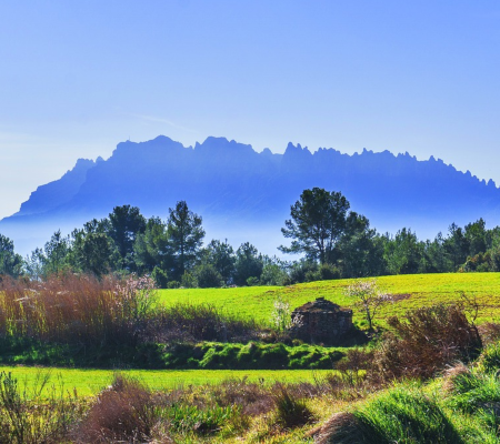 private luxury Minivan Daytrip from Barcelona Montserrat DreamingBarcelona